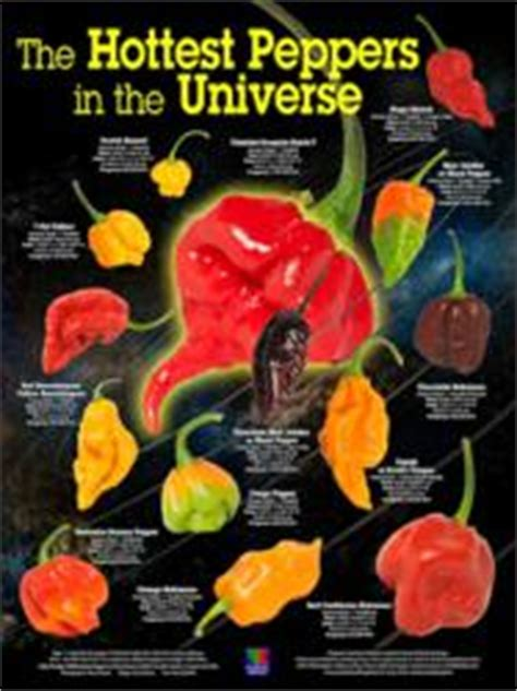 The Hottest Peppers in the Universe Poster Released