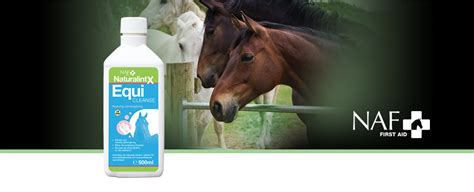 EquiCleanse | Equine Supplements | Supplements for Horses