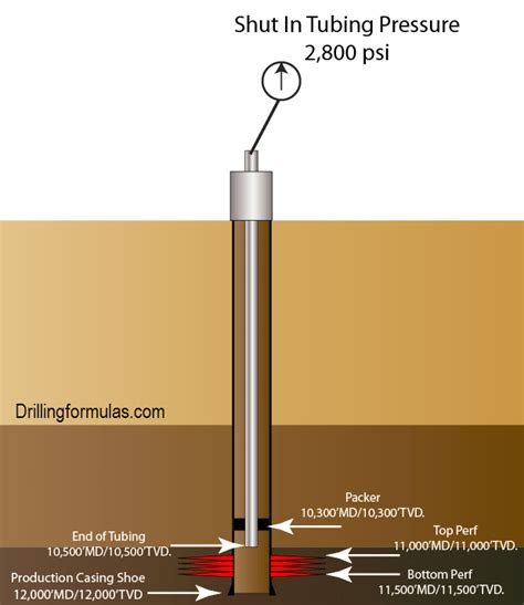 Figure 2 – Diagram of the well
