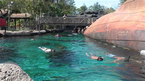 Shark Reef - Orlando Tickets, Hotels, Packages