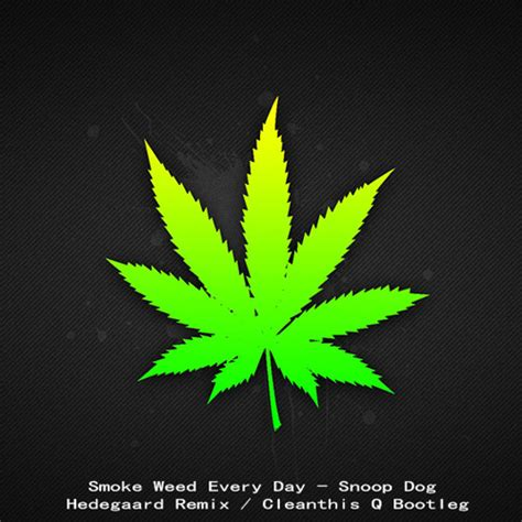 Smoke Weed Every Day - Snoop Dogg (Hedegaard) Q Bootleg by